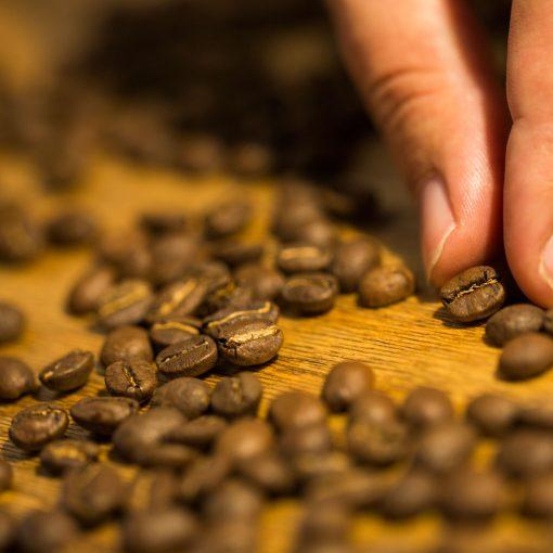 Was macht guten Kaffee aus?